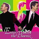 Enter the Phoenix VOSTFR DVDRIP XVID preview 2